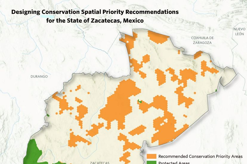 Cartography of conservation areas identified for the Zacatecas Water Fund in Mexico.