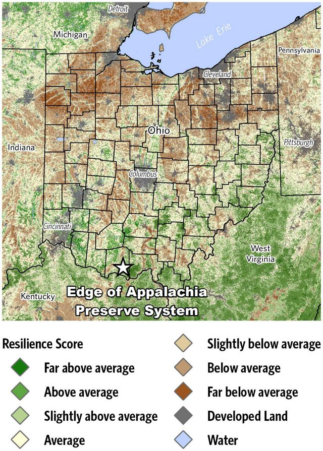 A map showing the most resilient natural areas in Ohio in green and the least resilient in brown.