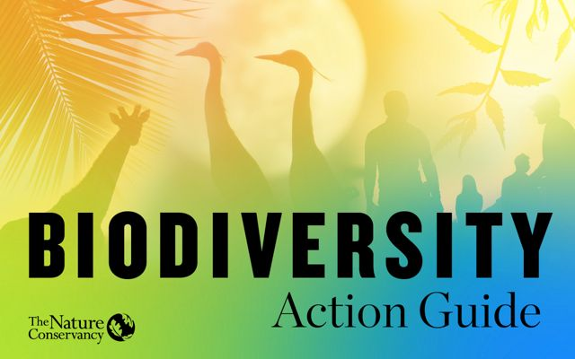 Biodiversity Action Guide