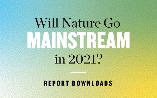 green, blue and yellow graphic with text that reads 'will nature go mainstream in 2021? report downloads'