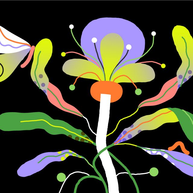 A graphic using bright neon colors of a butterfly resting on a flower.
