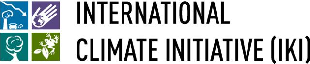 THE INTERNATIONAL CLIMATE INITIATIVE