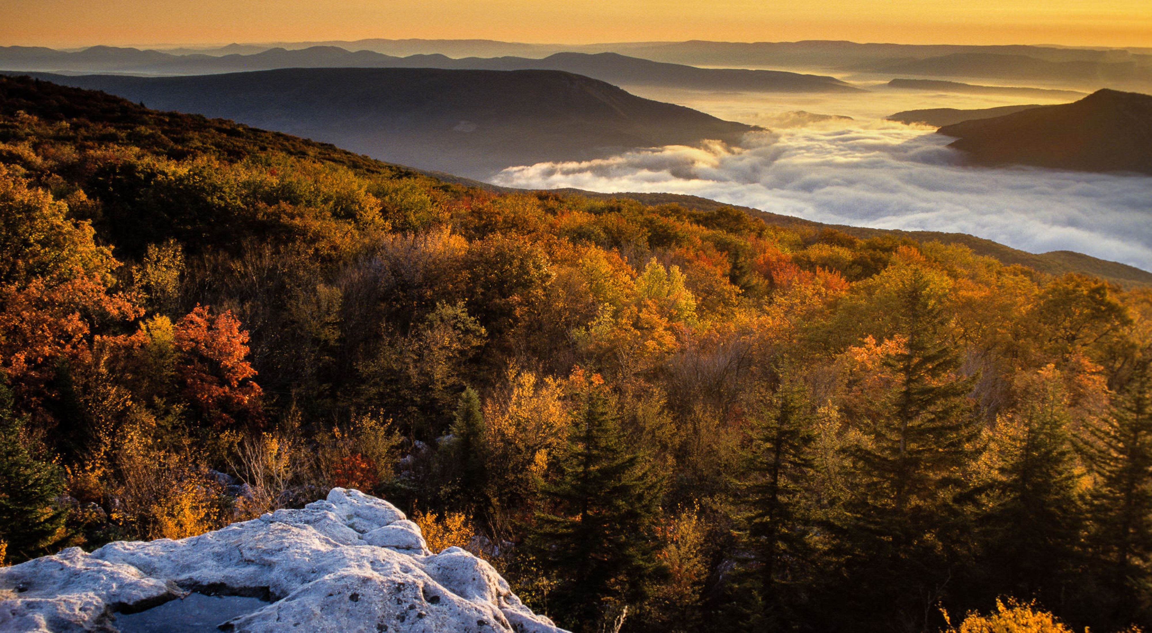 View from a West Virginia mountaintop of fall foliage and fog in the valley.