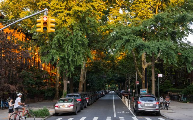 A shaded street in Park Slope, Brooklyn, New York City, lined with many tall trees.