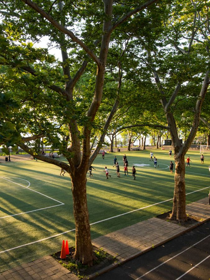 View of a tree-lined soccer field in a city park.