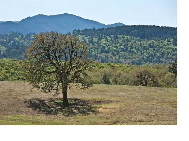 May 8, 2017- Sheridan, OR- The Nature Conservancy donor tour of Noble Oaks Preserve