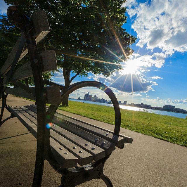 Park bench and trees with the Detroit River and skyline