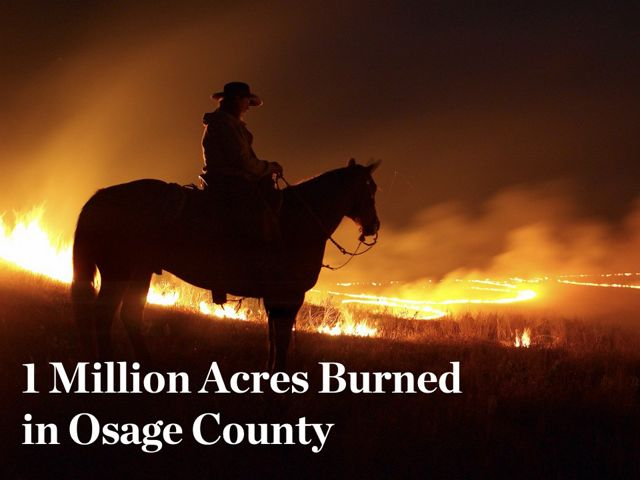 """Man sitting on a horse atop a hill looking over a prescribed fire with overlaid text that reads """"1 Million Acres Burned."""""""