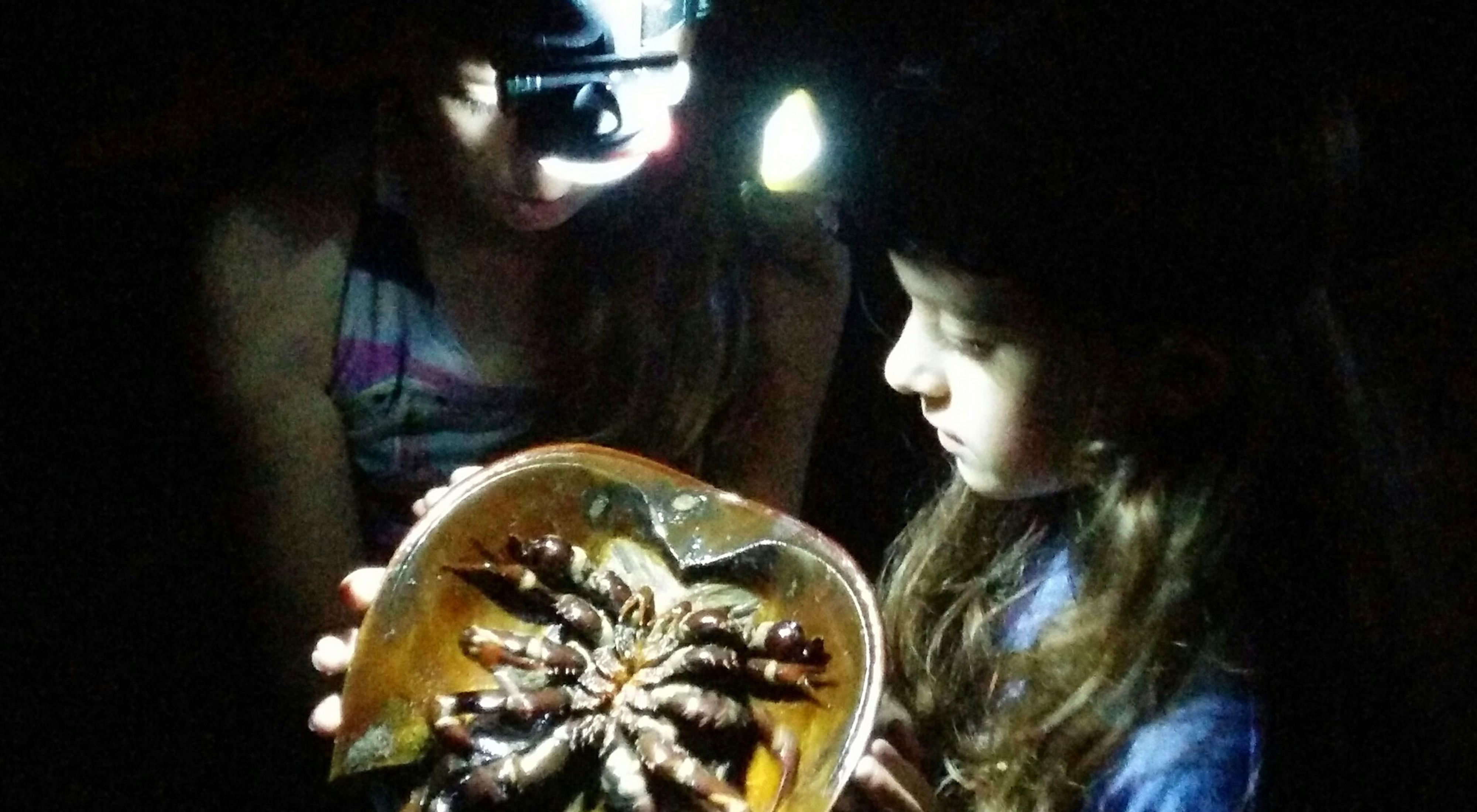 The Nature Conservancy staff member Kim Hachadoorian's daughters hold a horseshoe crab during the surveying process. While horseshoe crabs may look a little scary, they are indeed harmless.
