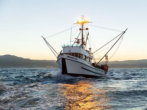 The Moriah Lee out of Morro Bay, California, is one of the vessels participating in the California Groundfish Collective, experimenting with electronic monitoring systems.