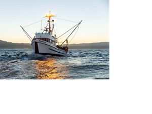 Fishing vessel called Moriah Lee in California's Morro Bay.