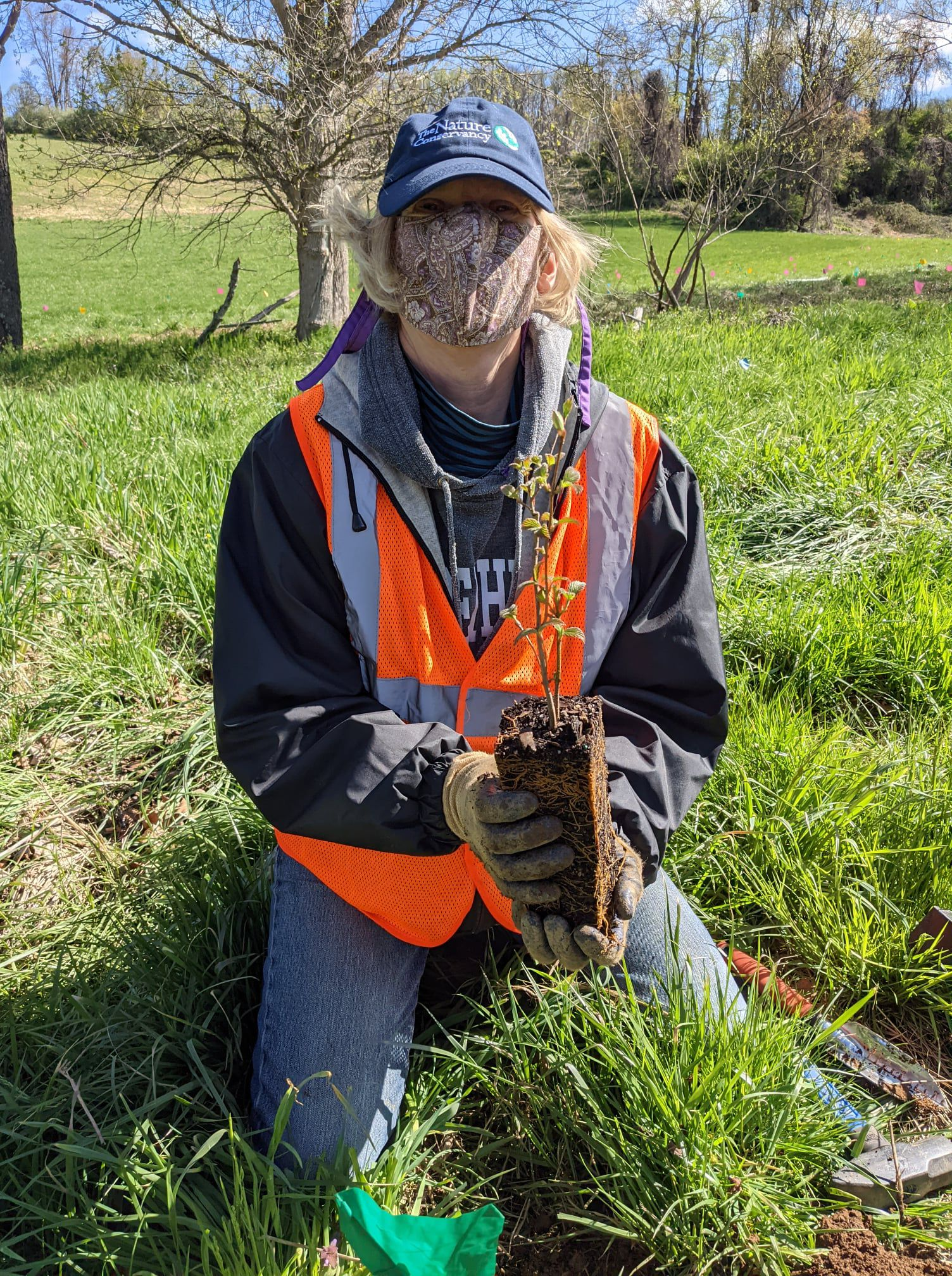 A woman wearing a face mask and an orange safety vest kneels on the ground holding a small plant with long roots, ready to be planted in the ground.