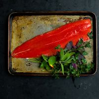 Fresh fillet of wild sockeye salmon