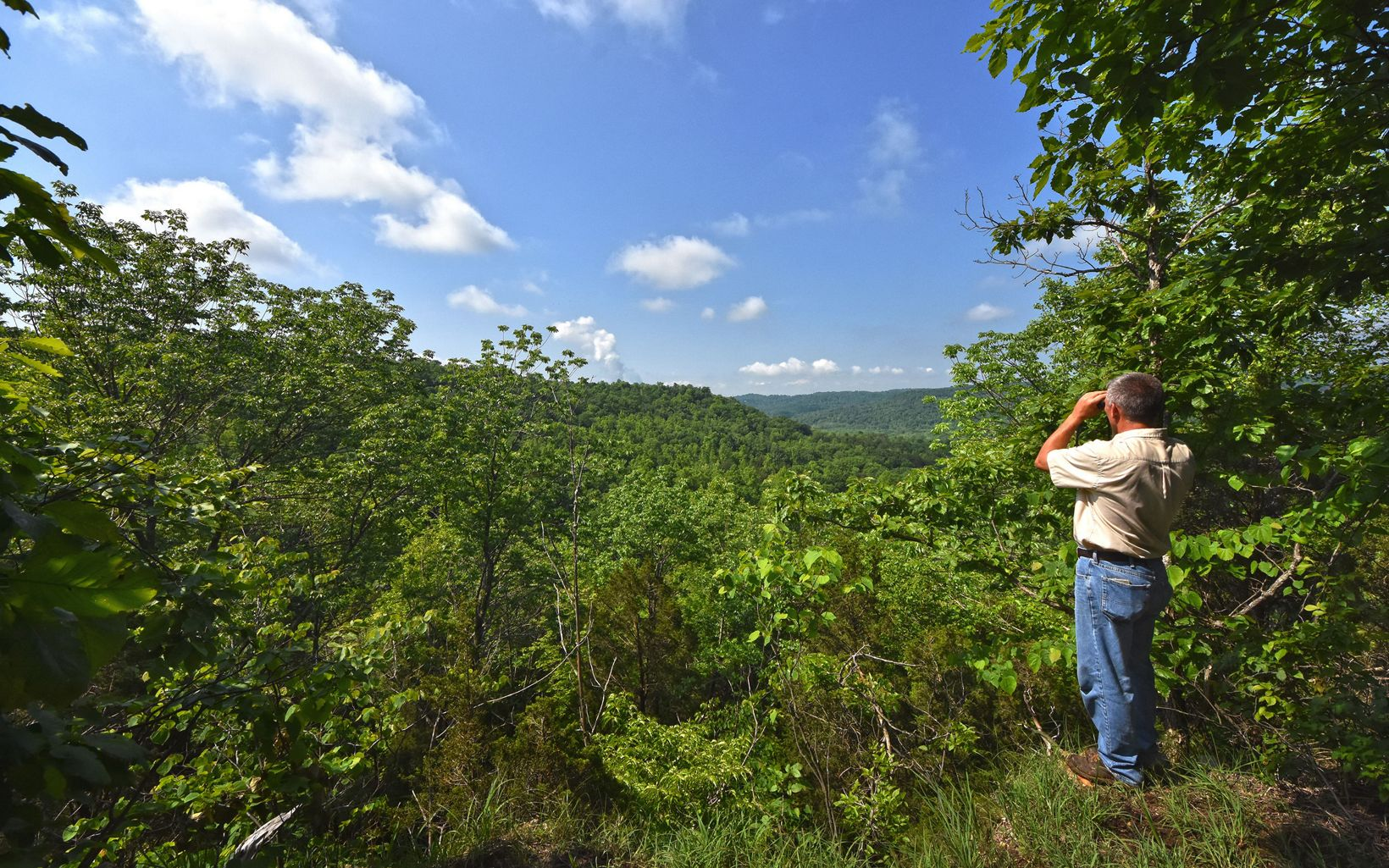 A hiker looks out through binoculars over green hills.