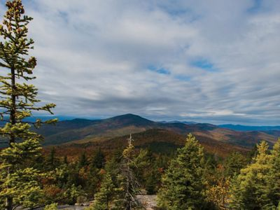 View of mountains and trees in fall.