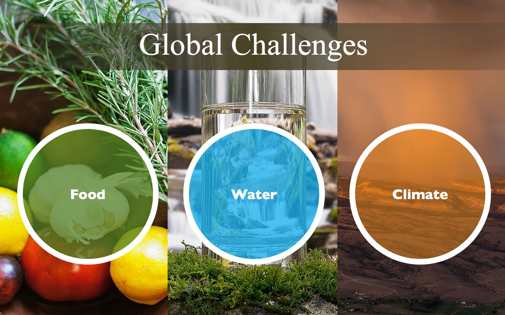 Infographic: reThink Soil Roadmap - Global Challenges