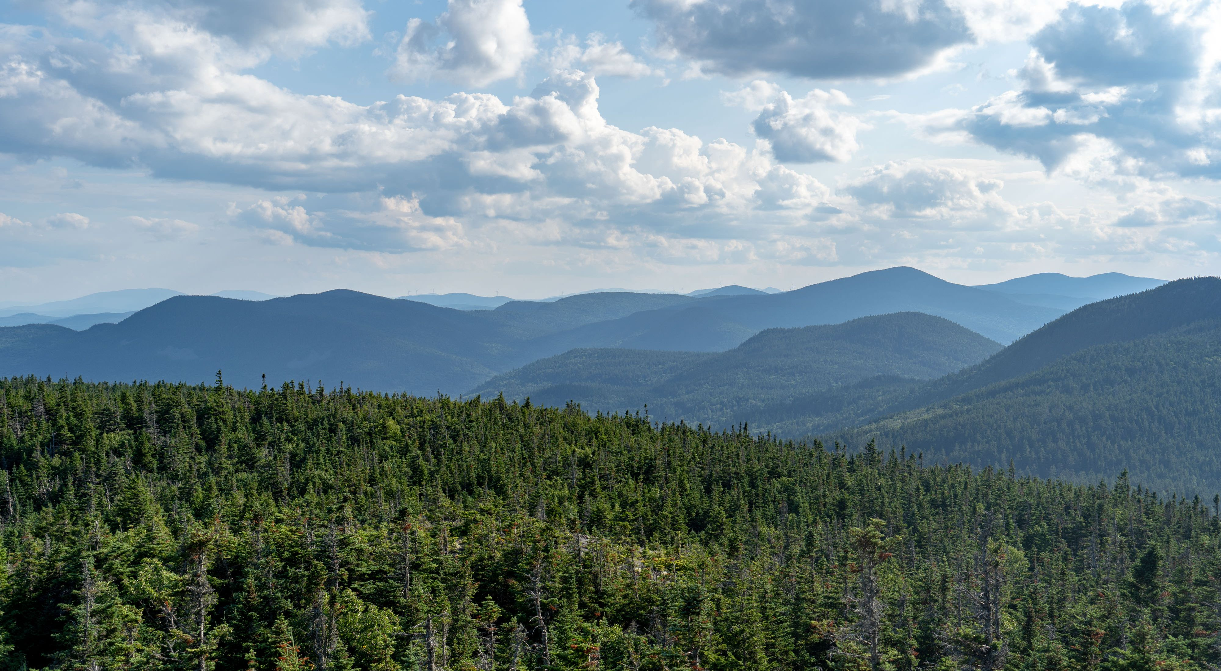 The view from Number 5 Mountain in Leuthold Preserve.