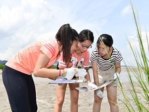A group of students standing in wetlands, studying an information sheet.