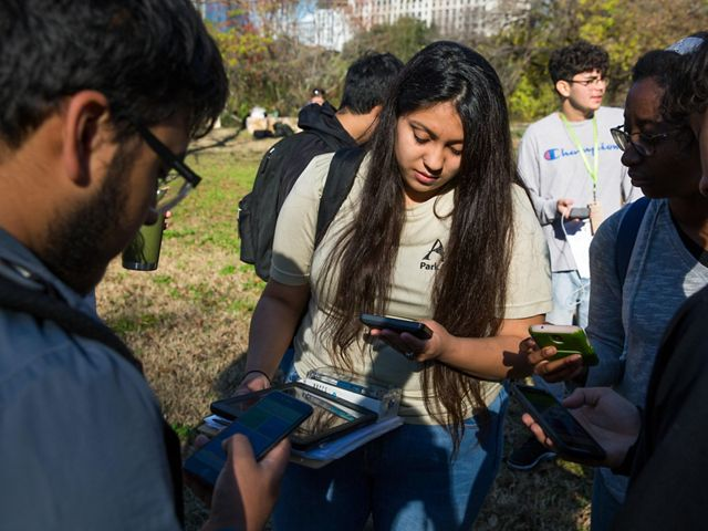 Four youths identify plants using the iNaturalist app in their mobile devices.