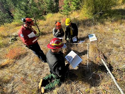 A wildland fire crew of four men measure fuels of grass and sticks in a 1-meter square near San Juan, Colorado.