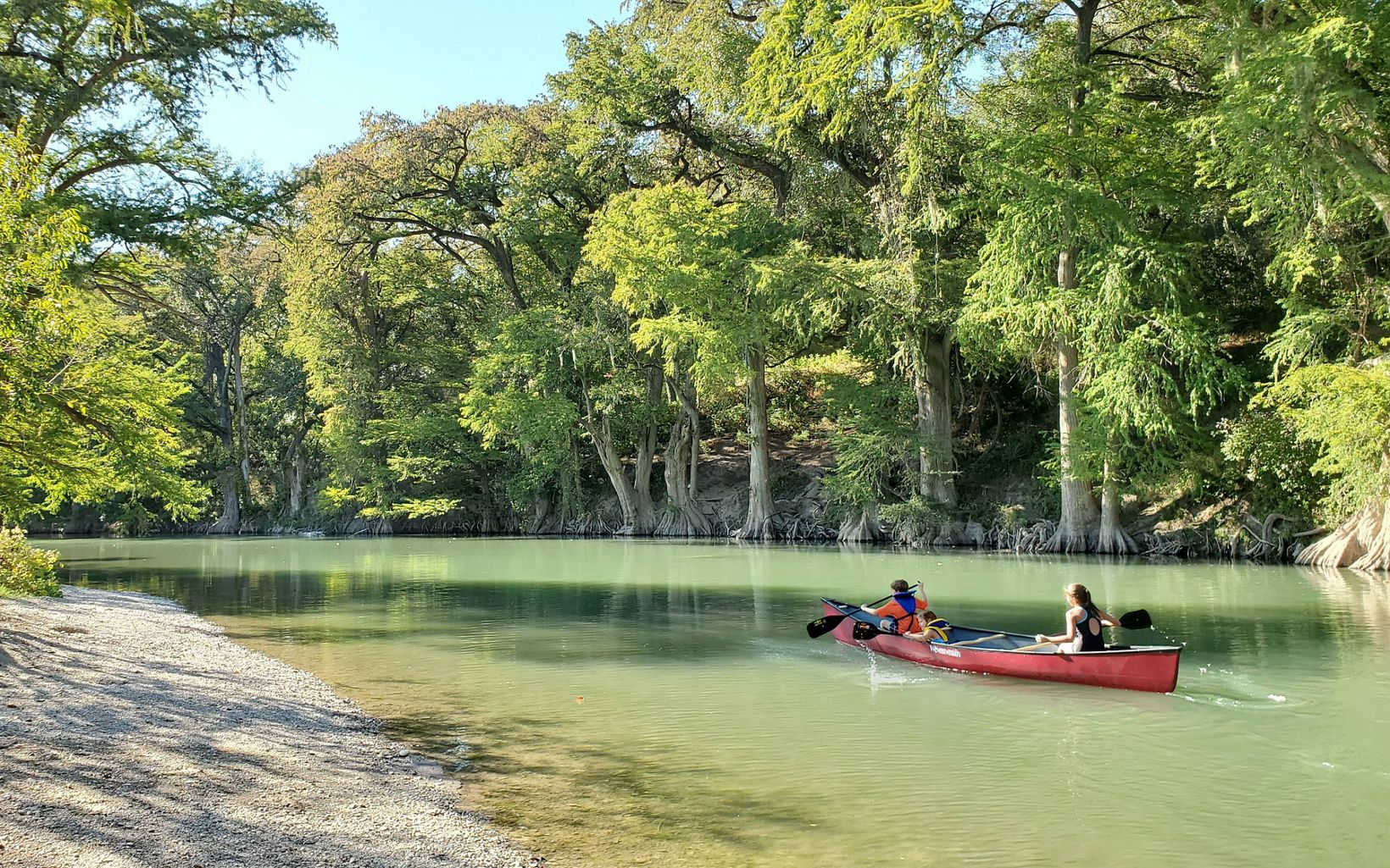 Kids canoeing a lush, green, tree-lined portion of the Guadalupe River in Texas.