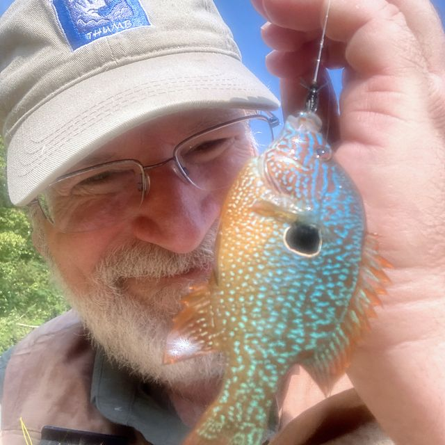 Man holding a hooked fish on a fishing line.
