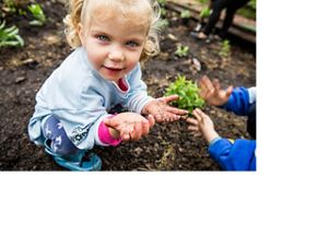 A child helps plant a garden at DC's Seaton elementary