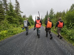 Members of the Hoonah Native Forest Partnership walk to a study site.