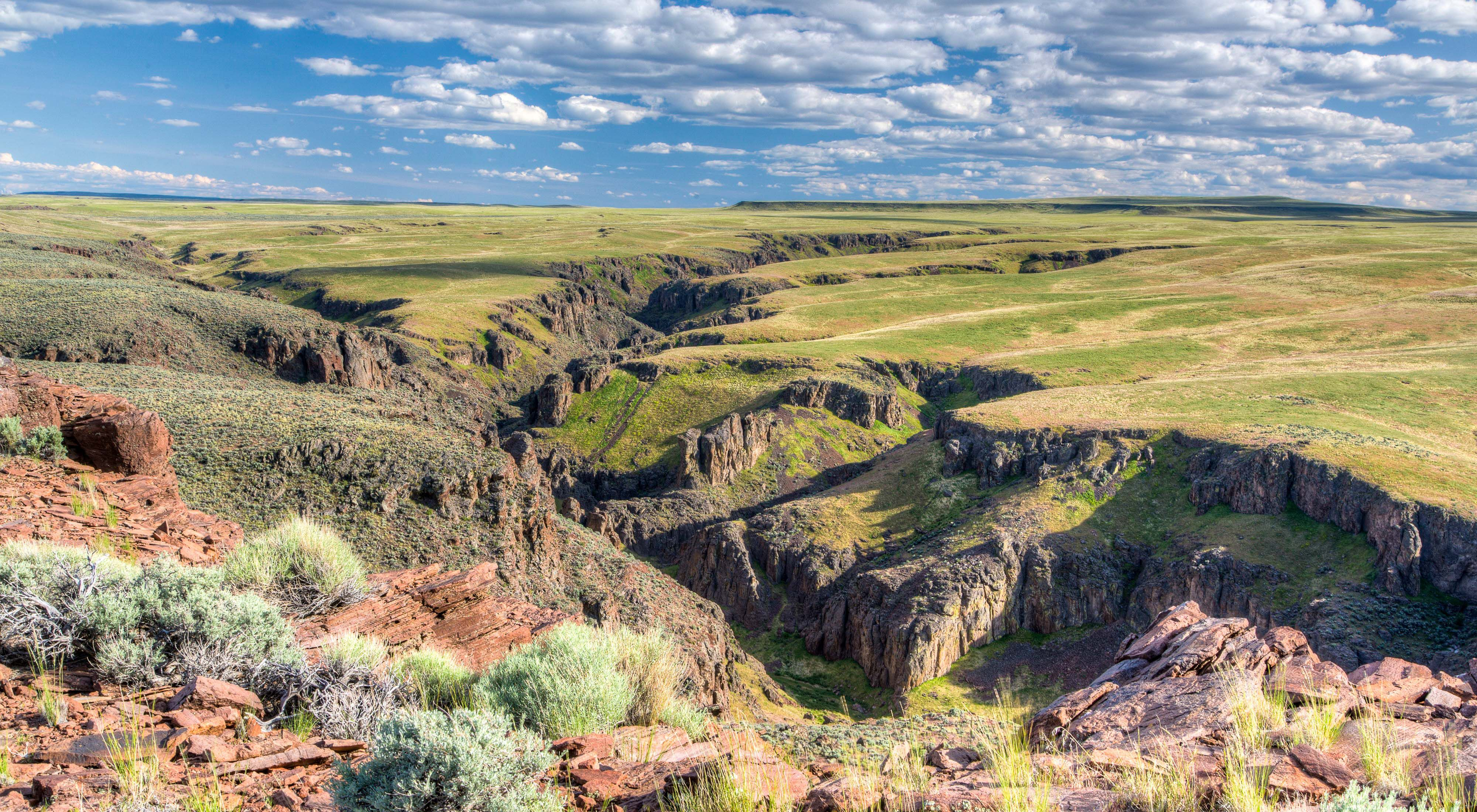 The Owyhee Canyonlands area a remote area made of deep canyons and high desert plateaus in southern Idaho.