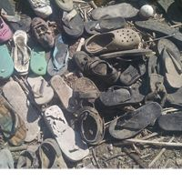 Flip flops gathered by mystery volunteer at McCarran Ranch Preserve on the Truckee River.