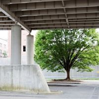 Trees in parking area under Spaghetti Junction, in Louisville, Kentucky. Small pockets of nature, in the right place, can make a big difference for public health.