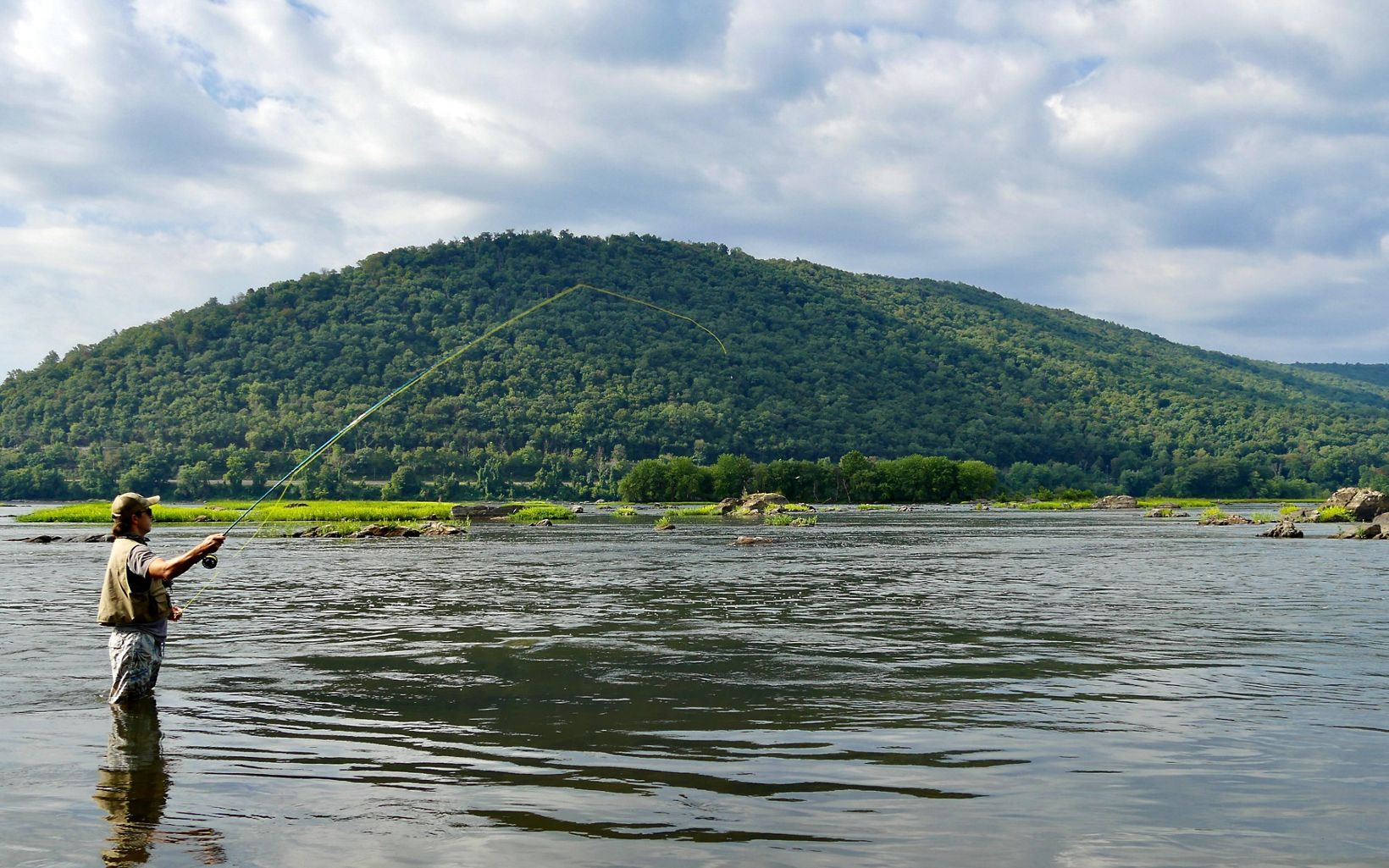 A man wearing waders stands hip deep in the Susquehanna River casting a fishing rod. The green forested Cove Mountain rises behind him under low white clouds.