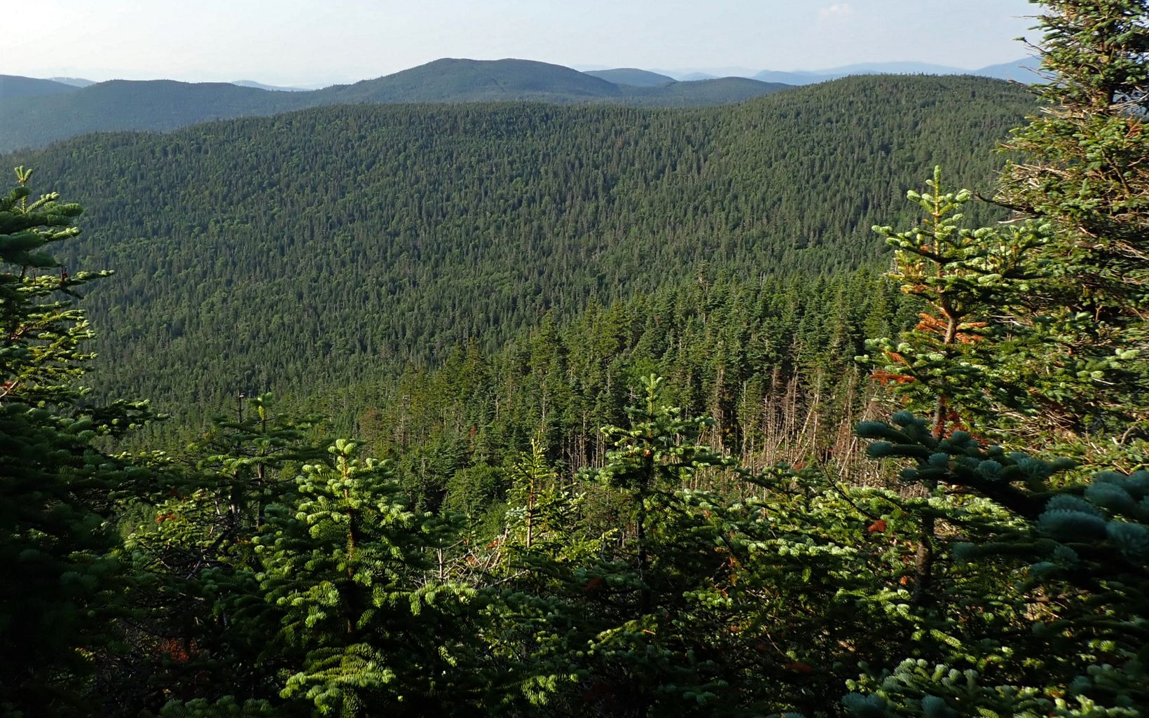 A view from Caribou Mountain in Boundary Mountains Preserve.