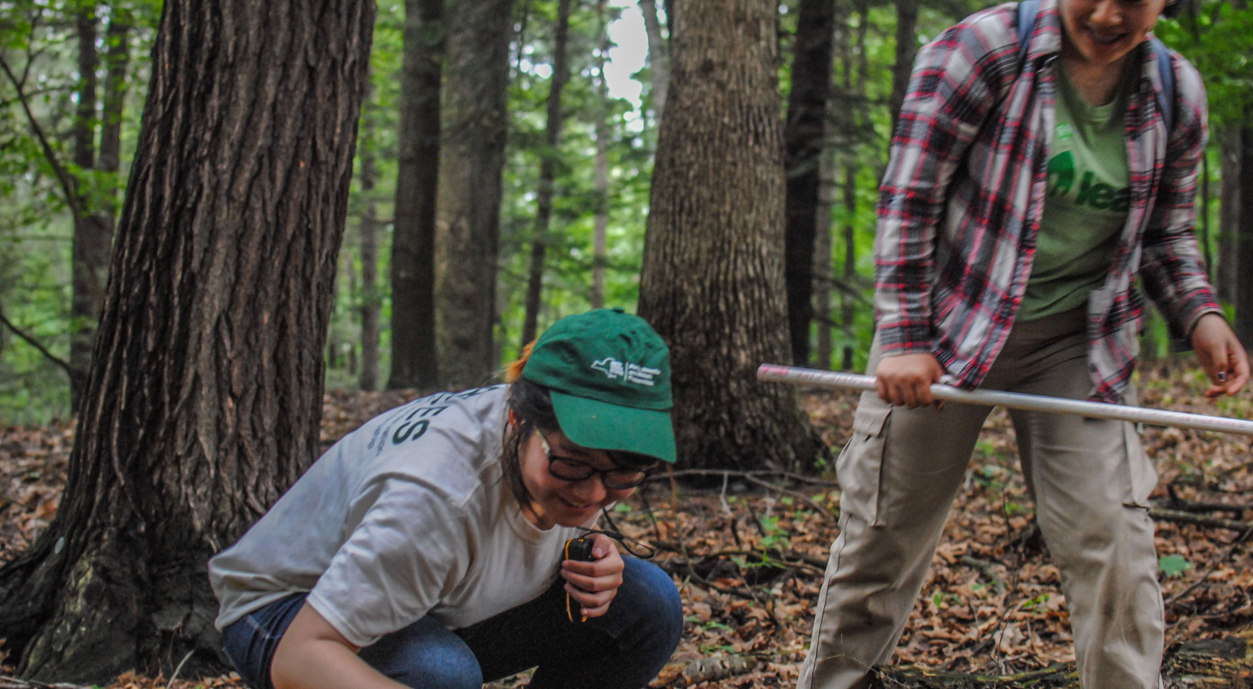 Two trail stewards collecting data on the forest floor.