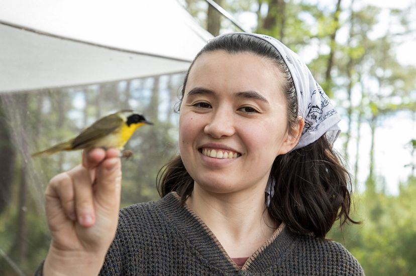 A smiling woman holds a small bird by its feet. The bird has greenish black wings, black face, gray cap and yellow breast.