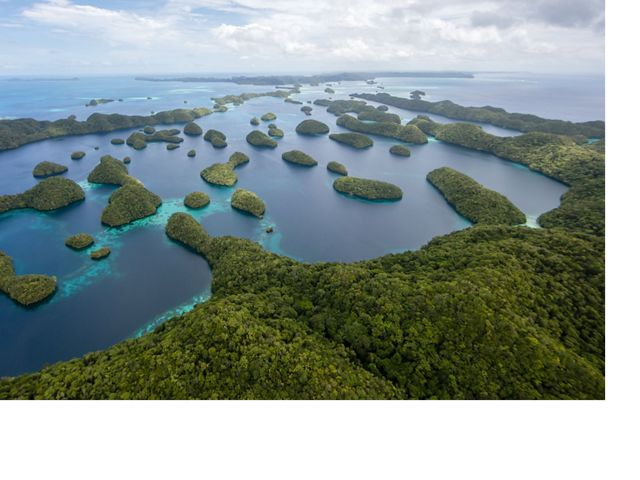 Palau - Philippines - The Nature Conservancy is working with fishermen in Palau to test new fishing practices and methods to reduce bycatch, such as rays, turtles, and silky sharks, and to sustainably manage the Pacific tuna fishery, the world's largest tuna fishery. Photo by Jonne Roriz/The Nature Conservancy