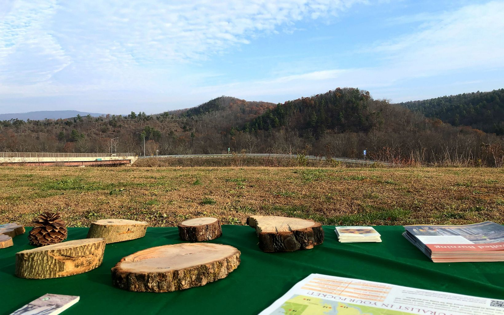 Tree cookies were on hand at TNC's public viewing station for visitors to learn more about fire's role on the landscape.