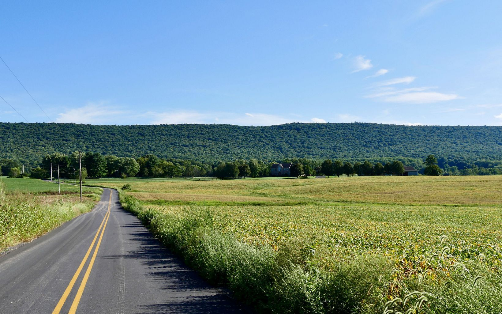 A two-lane blacktop road stretches into the distance between green fields. A heavily forested mountain rises in the background.