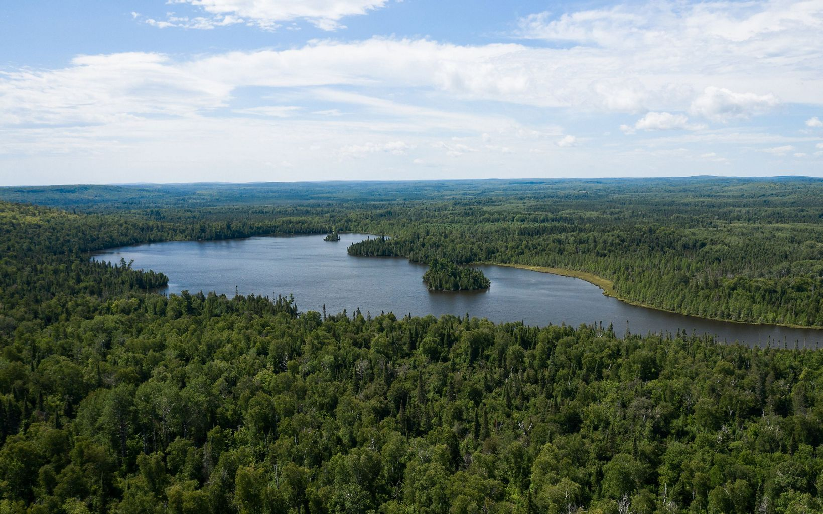 A large lake surrounded by unbroken forest glistens under blue skies.