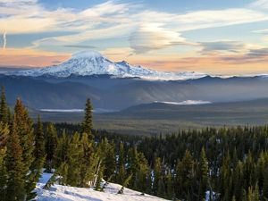 Mt. Rainier and Little Tahoma Peak are seen at sunrise with massive lenticular clouds above them - photographed from Mt. Adams.
