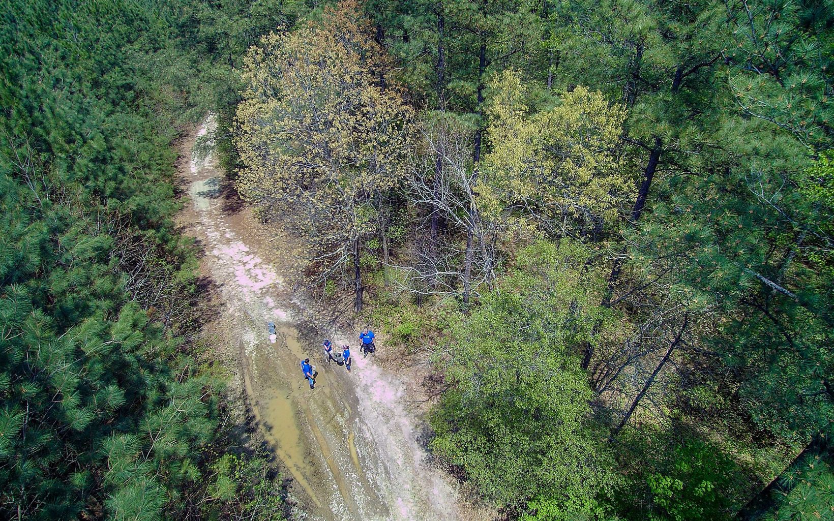 Drone view of Ponders Tract