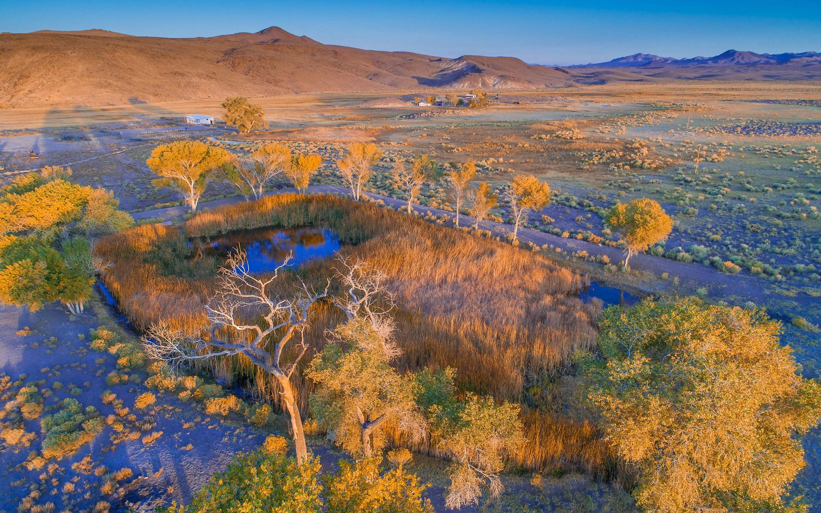 The 7J Ranch contains the headwaters of the Amargosa River, one of the country's largest hotspots for biodiversity.