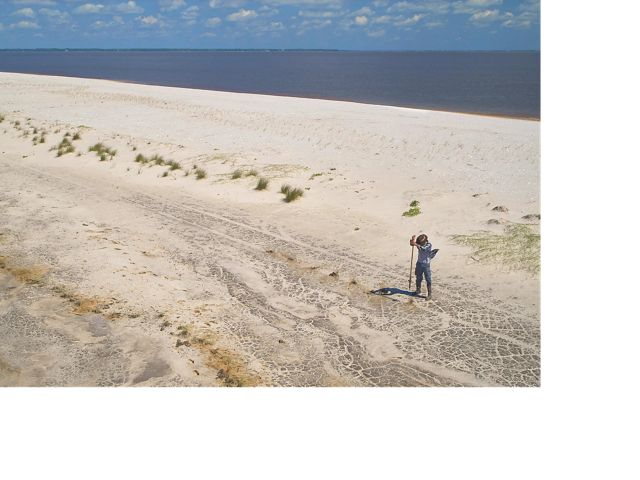 Members of The Nature Conservancy plant sea oats along the shore of Round Island, a few miles offshore of Pascagoula, Mississippi.