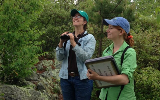 Two women conduct a bird monitoring count. One holds a pair of binoculars in her hands while looking up into the trees. The other holds a large clipboard to record observations.