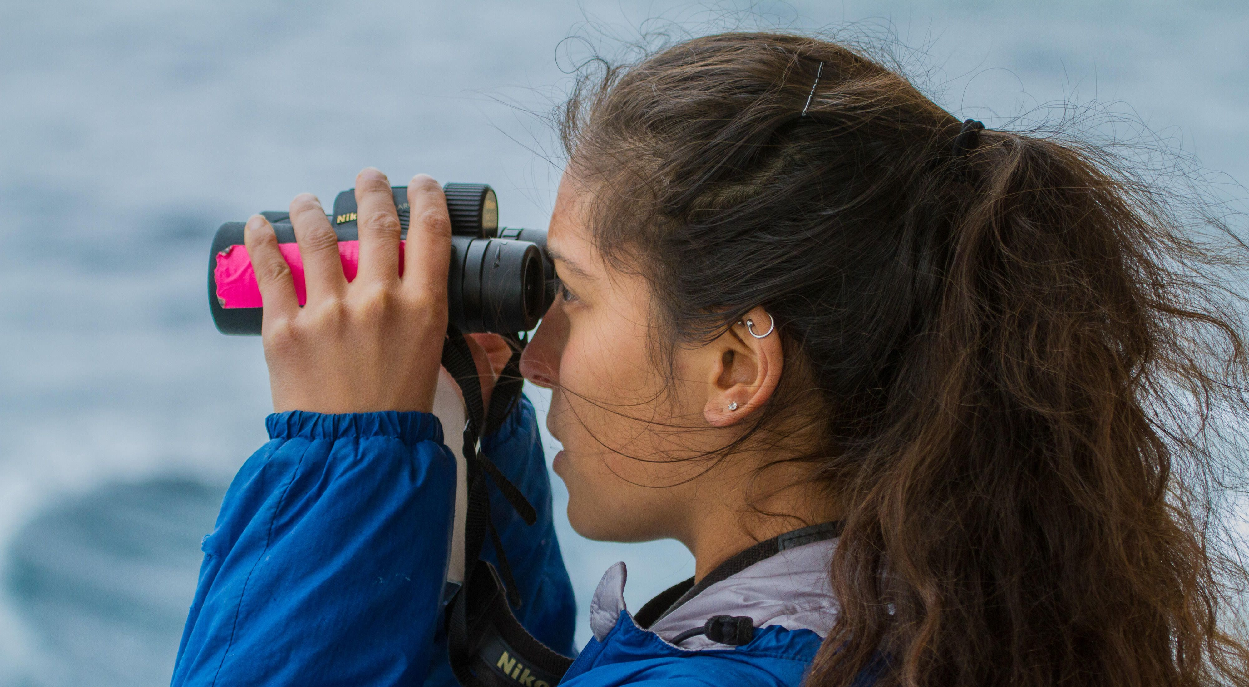 Scientists surveying for seabirds