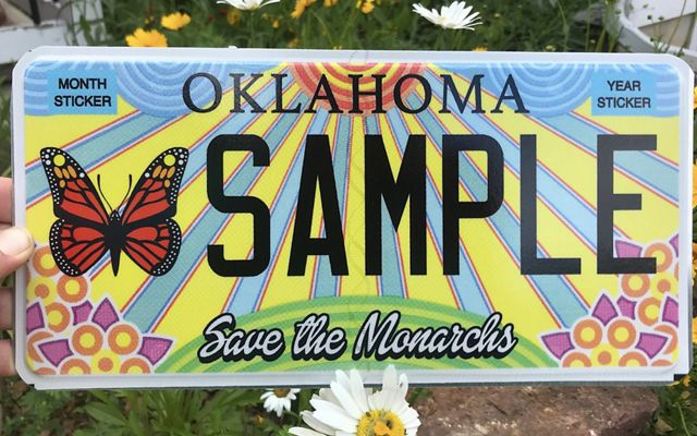 Speciality monarch-themed license plate.