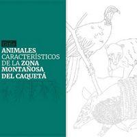 Presenta 14 especies de mamíferos y tres especies de aves características del piedemonte caqueteño, con información de su biología, ecología y estado de conservación.