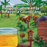 Guía práctica para la Implementación de la meliponicultura en la Amazonia colombiana