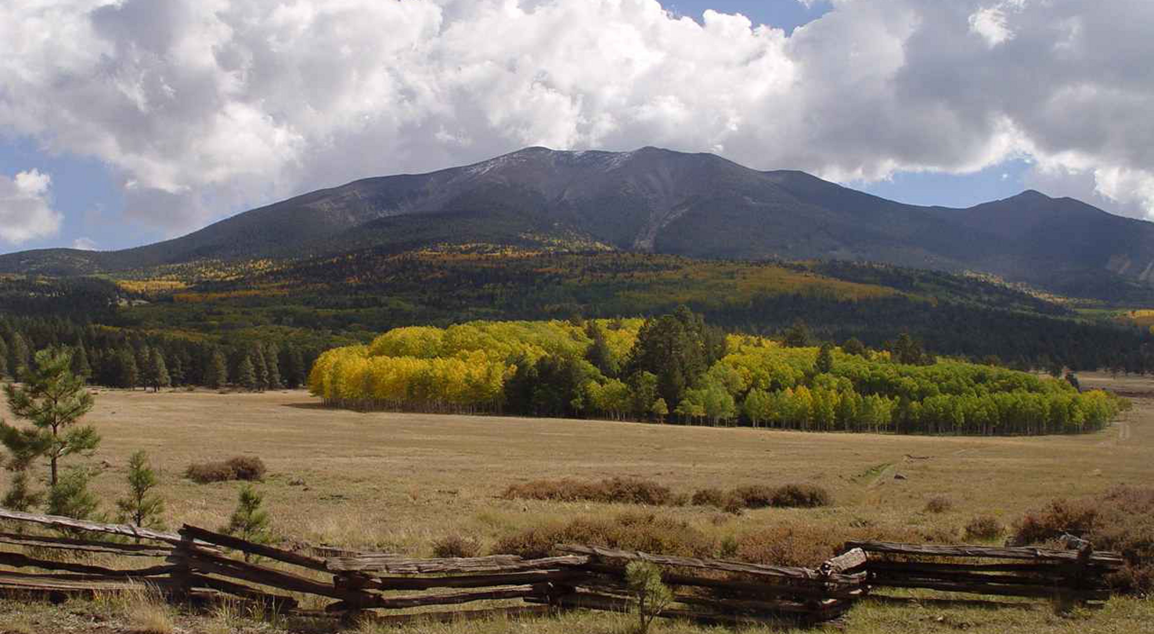 Behind a wood rail fence, fall colors dot the forests that lead to the San Francisco Peaks.