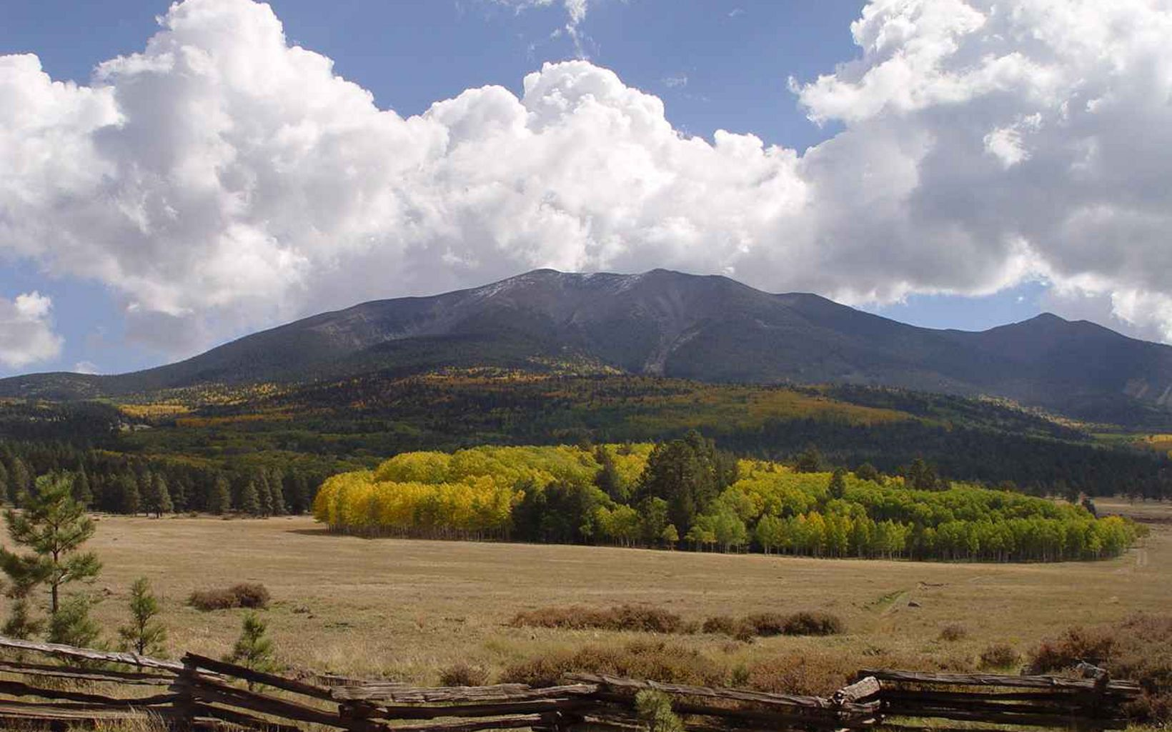 Beyond a rustic lateral wood fence, a browning meadow and yellow and green trees stand beneath the San Francisco peaks in the distance.